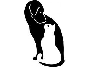 Animal_Clinic